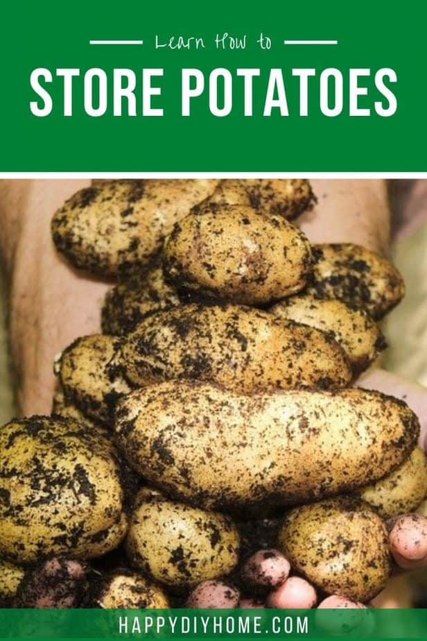 How to Store Potatoes 2