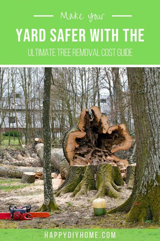 Tree Removal Cost 1