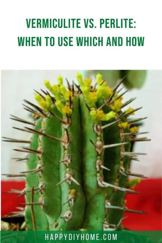 vermiculture vs perlite 1