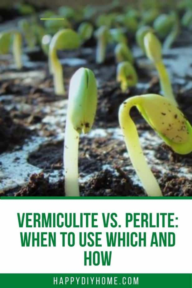 vermiculture vs perlite 2