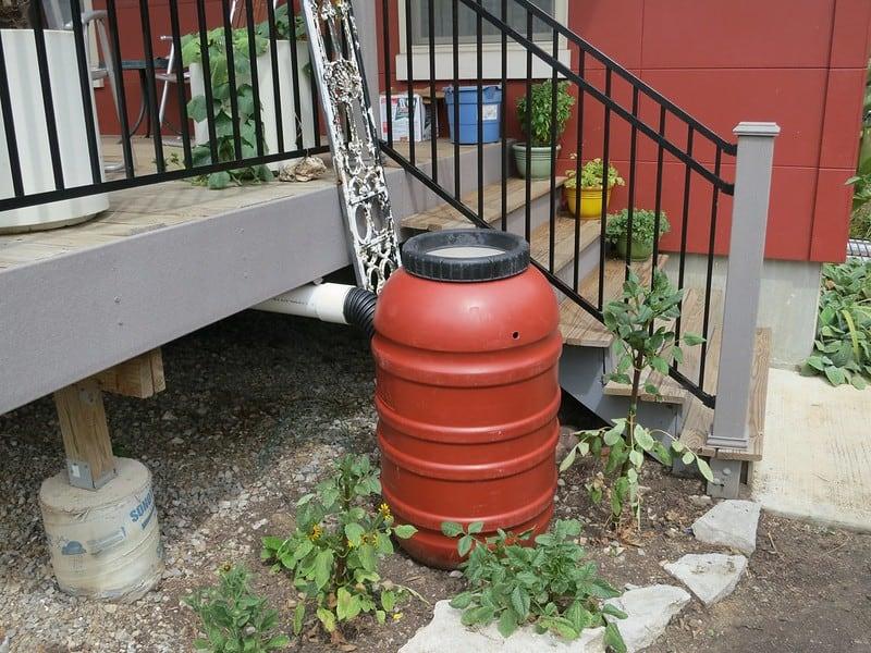 1 Plastic Rain Barrel