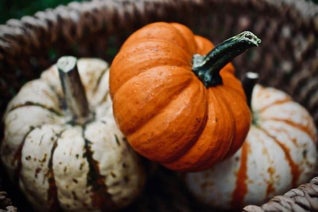 13 Small Pumpkins