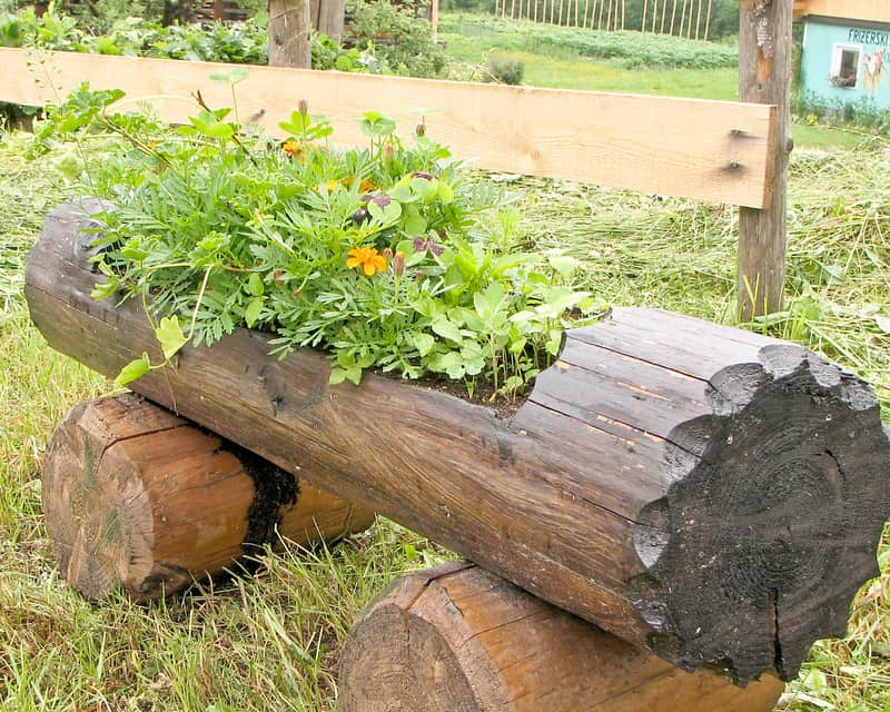 17 Log Planters