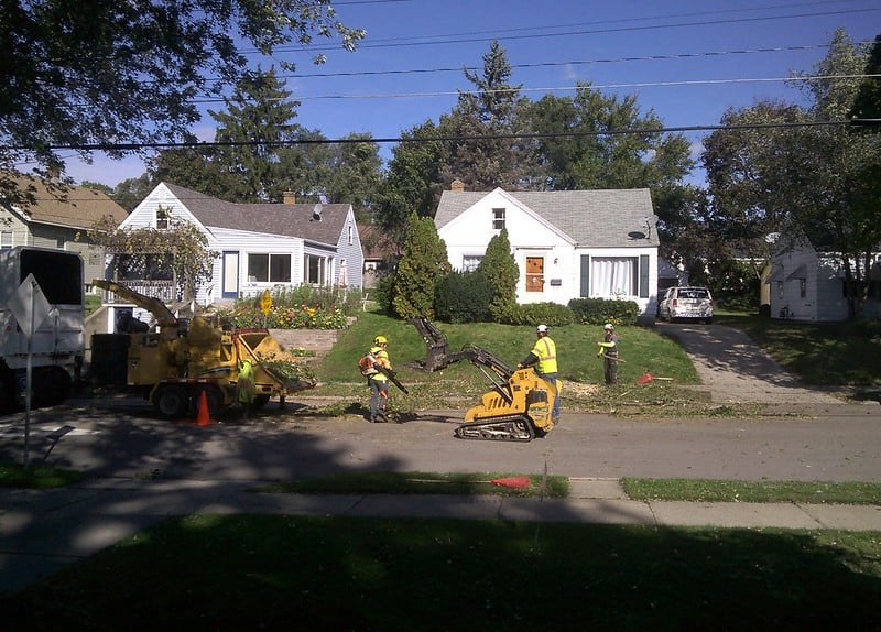 2 Removing a Tree