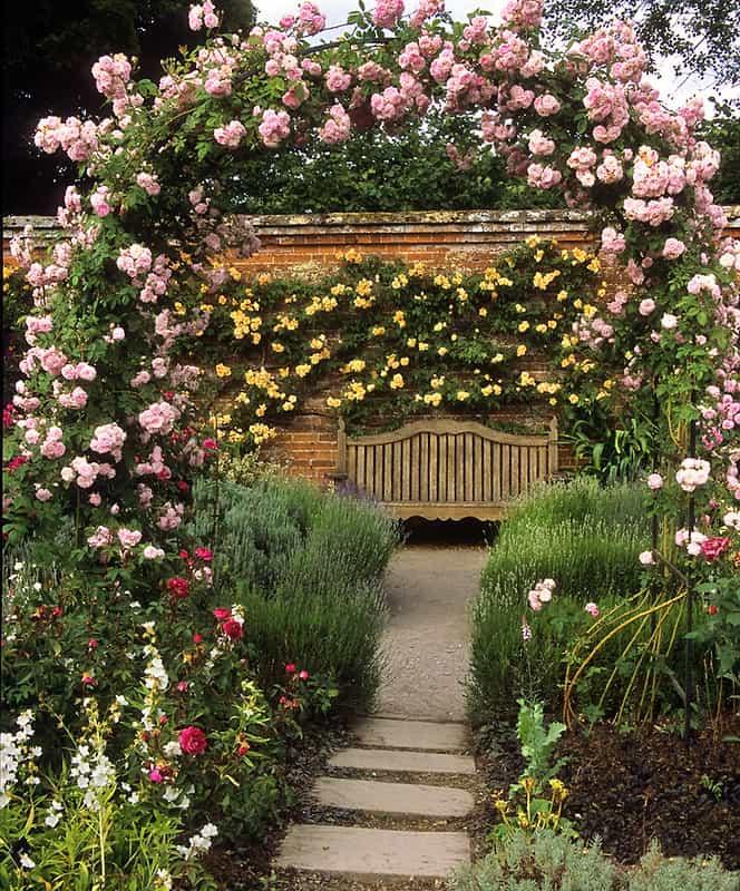 22 Rose Covered Arbor