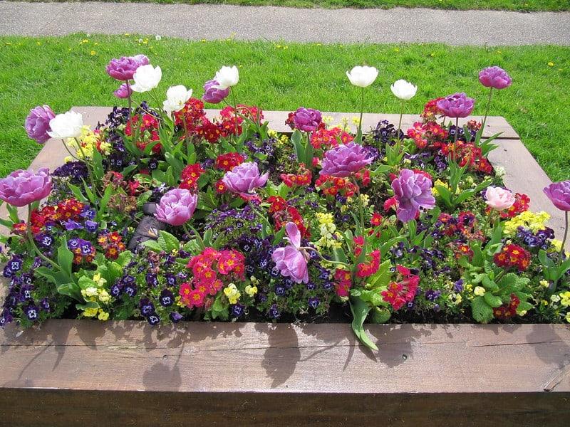 27 Flower Planter Display