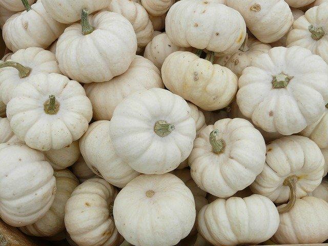 4 Miniature White Pumpkins