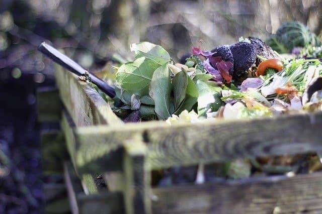 5 Start a compost bin