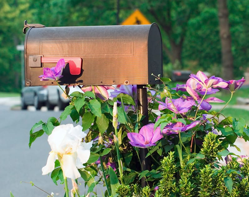 8 Mailbox with Flowers
