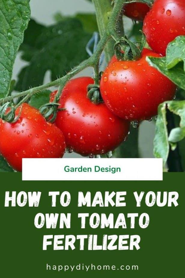 Tomato Fertilizer 1