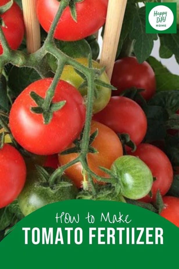 Tomato Fertilizer 2