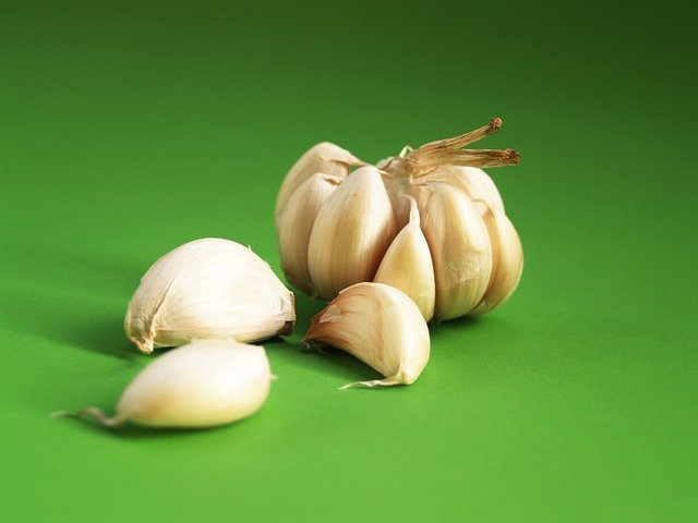 1 How to grow garlic in a pot