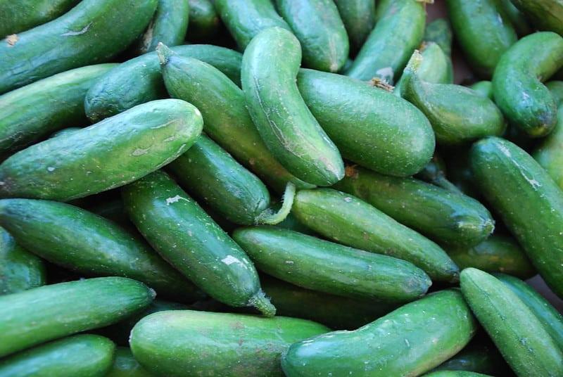 1 Persian Cucumbers