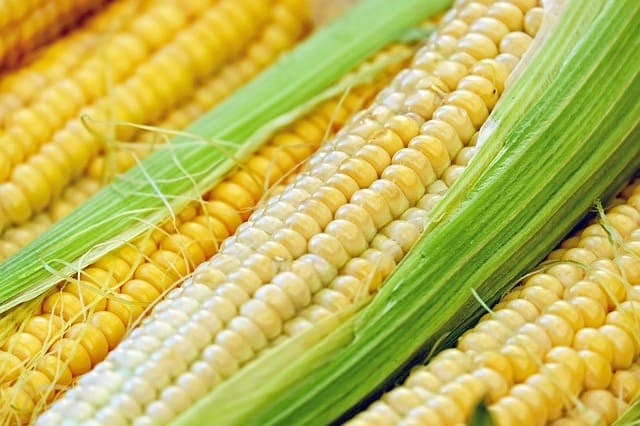 10 Fresh Corn