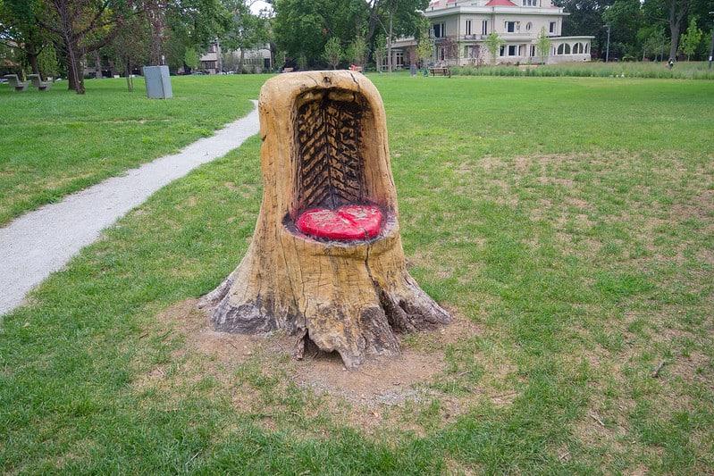 11 Tree Stump