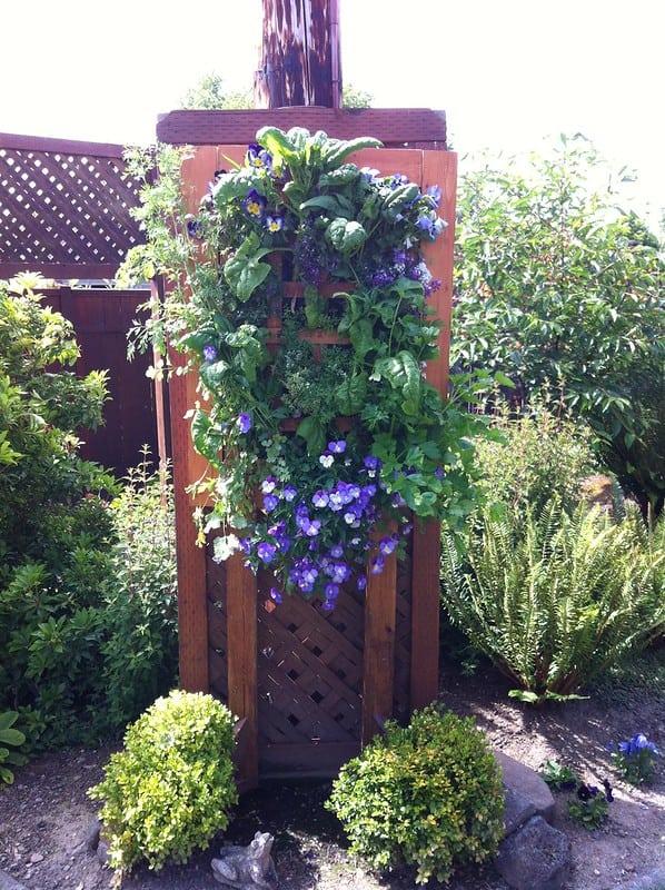 14 Vertical Garden