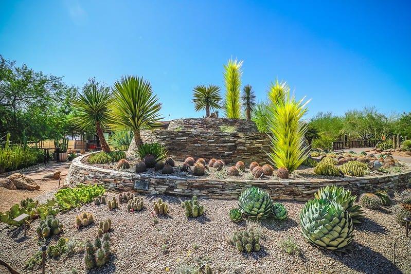 22 Tropical Rock Garden