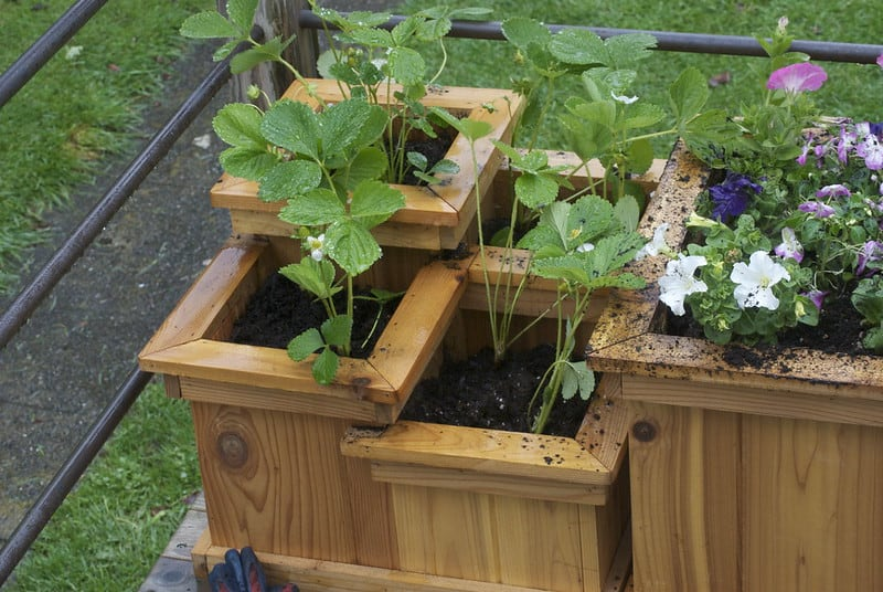 28 Tiered Planter Boxes