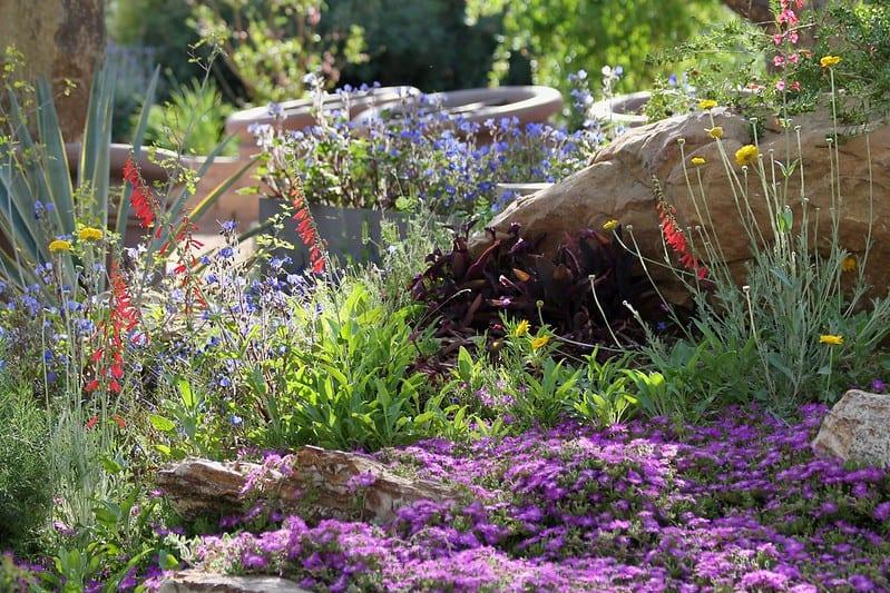 29 Edgeless Flower Beds