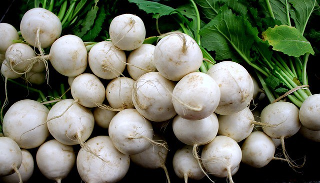 5 Turnips are reliable fall crops