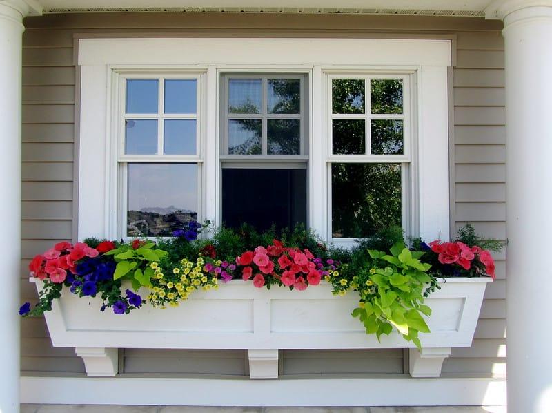 5 Window Boxes