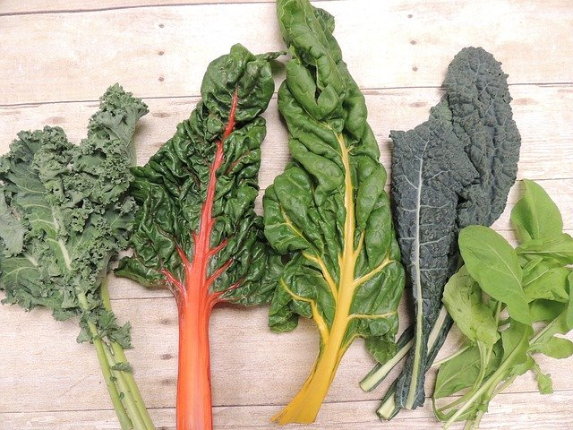 7 Freshly Harvested Chard and Greens