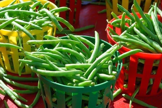 8 Green Beans
