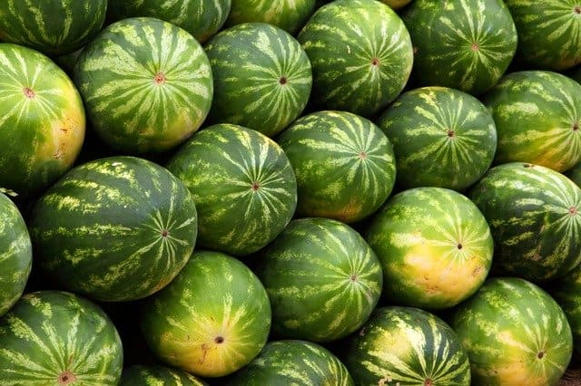 9 Watermelons