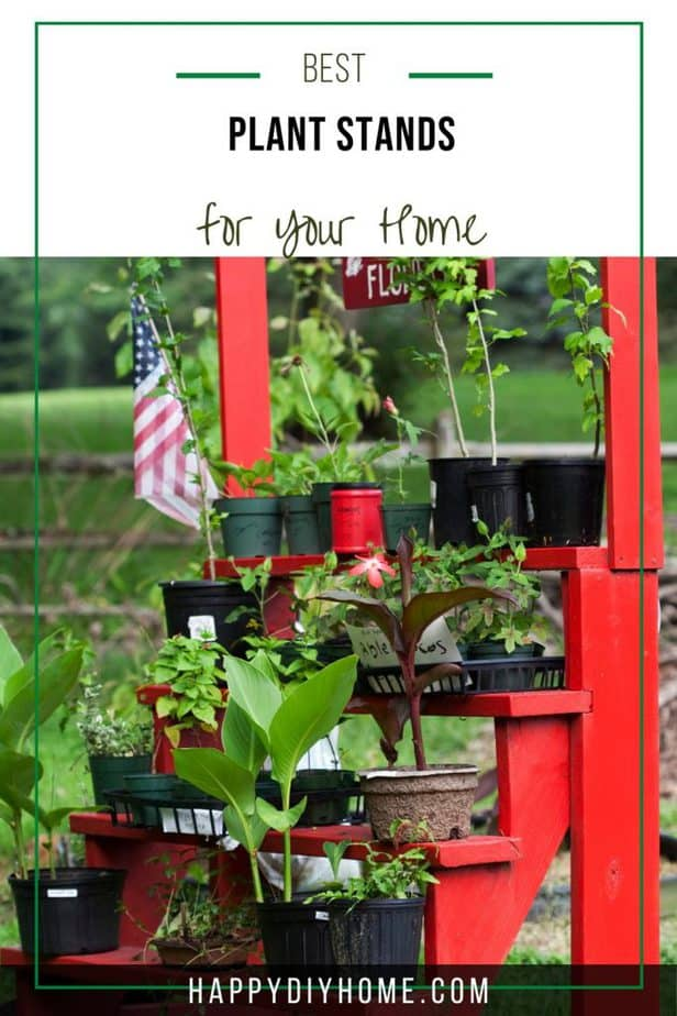Best Plant Stands 2