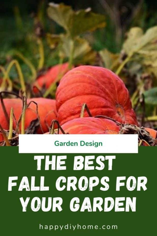Fall Crops 1