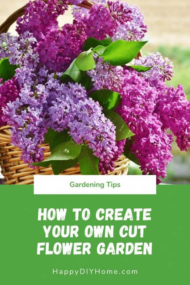 How to Create Your Own Cut Flower Garden