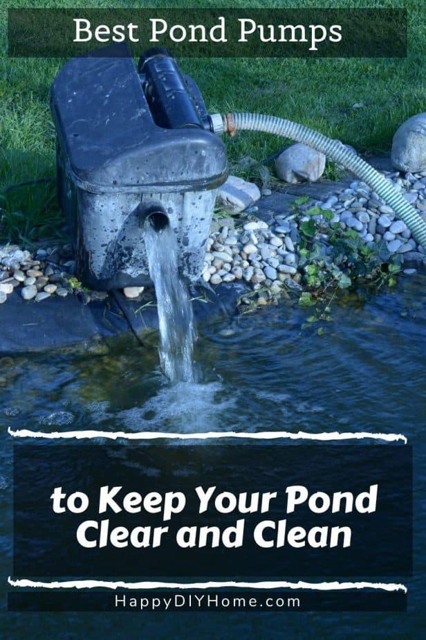 Pond Pump 1