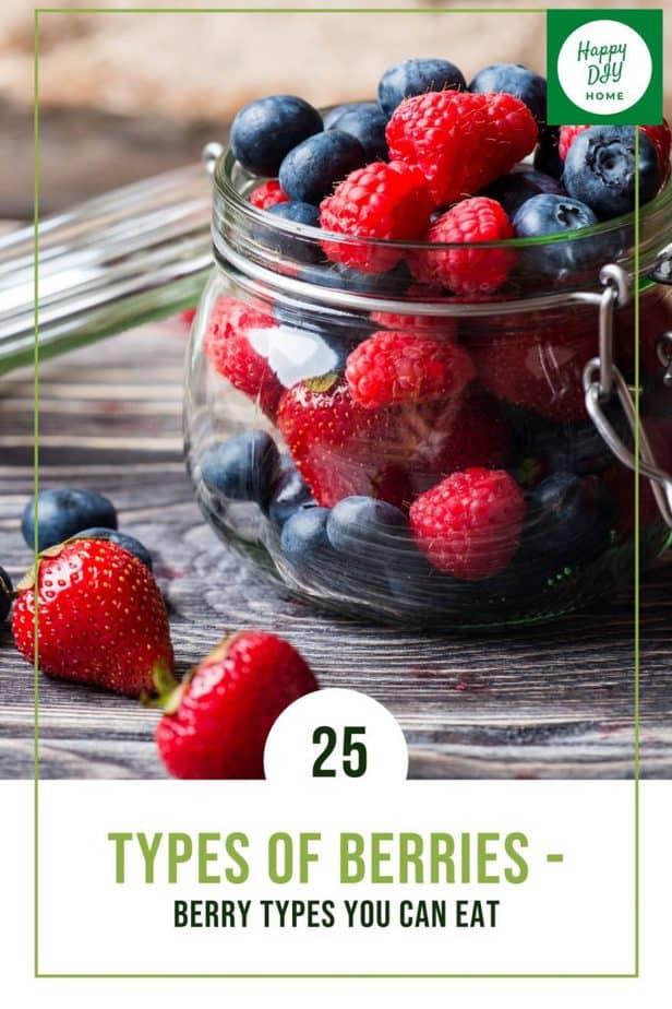 Types of Berries 1