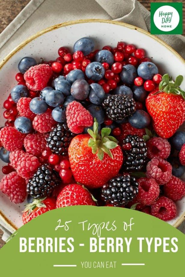 Types of Berries 2
