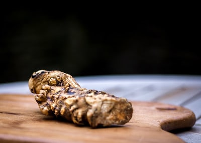1 Spicy horseradish plant roots