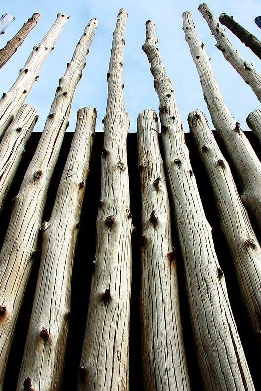12 Upright Logs