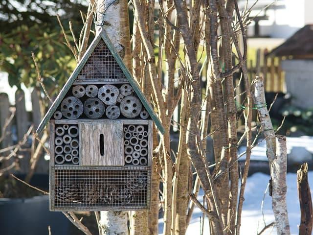 16. Bee house
