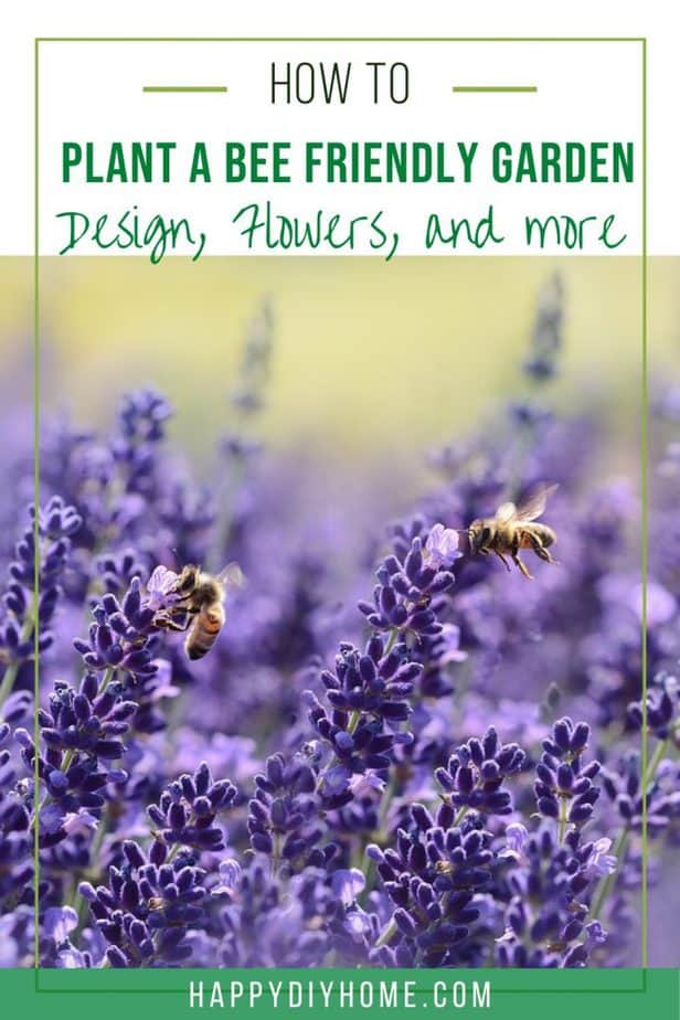 17. How to Plant a Bee Garden
