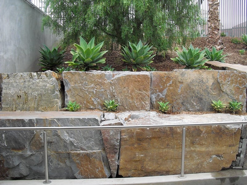18 Plant Wall