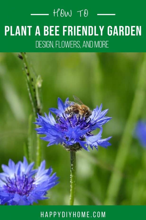 18. How to Plant a Bee Garden