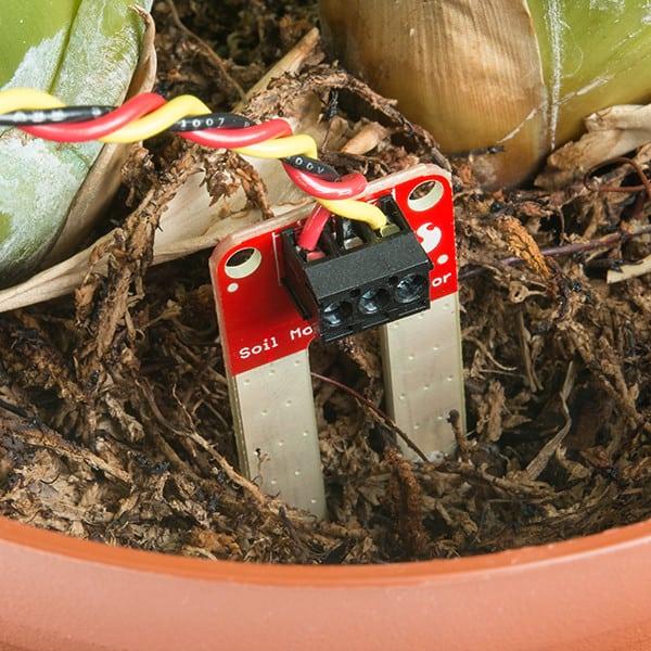 2 Soil Moisture Sensor Buying Guide