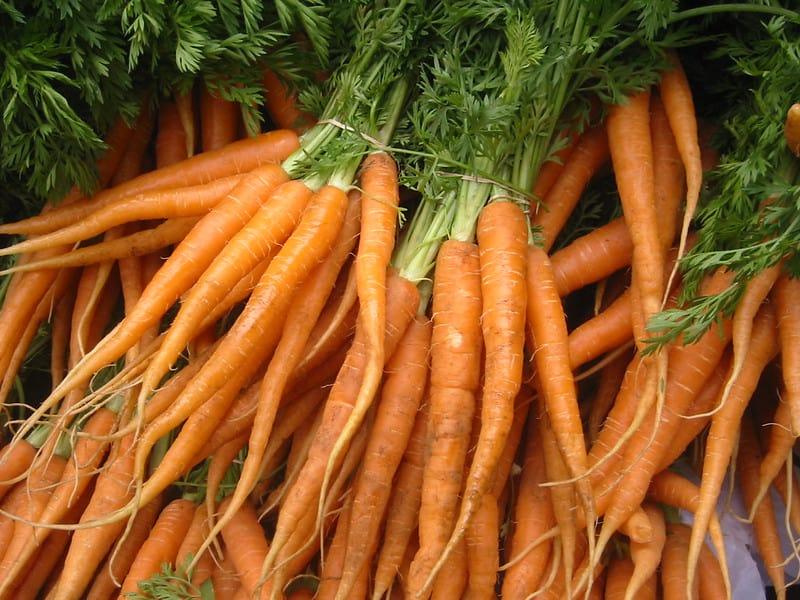 8 Carrots