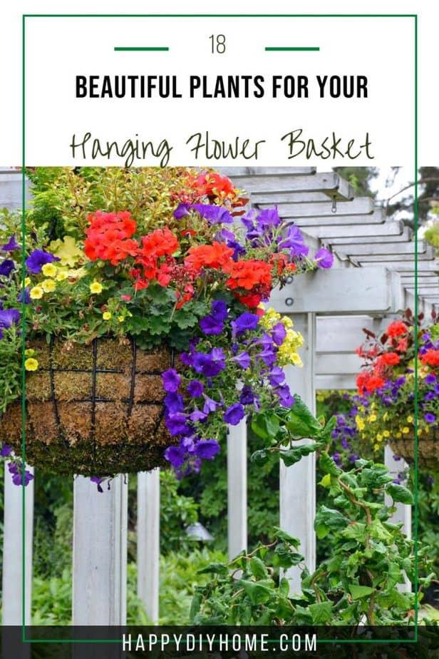 Hanging Flower Basket 2