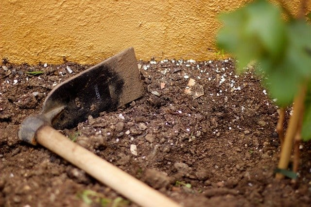 3 Prepare the soil