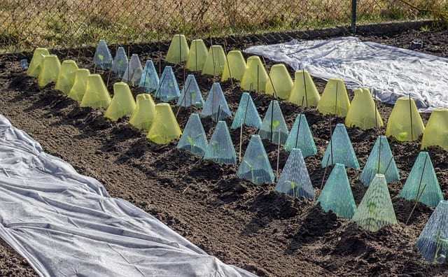 5. Plastic frost protection