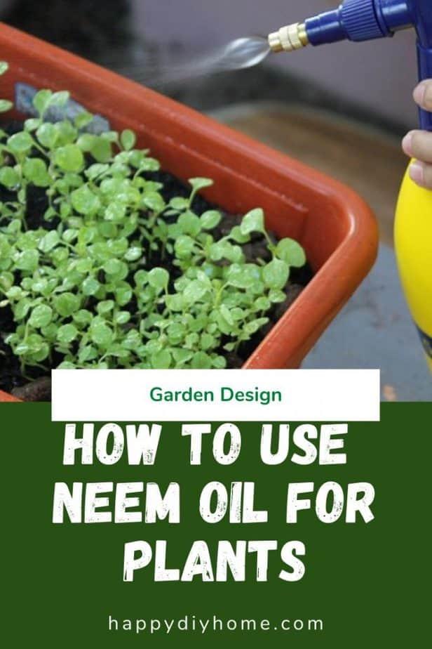 Neem oil for plants 1