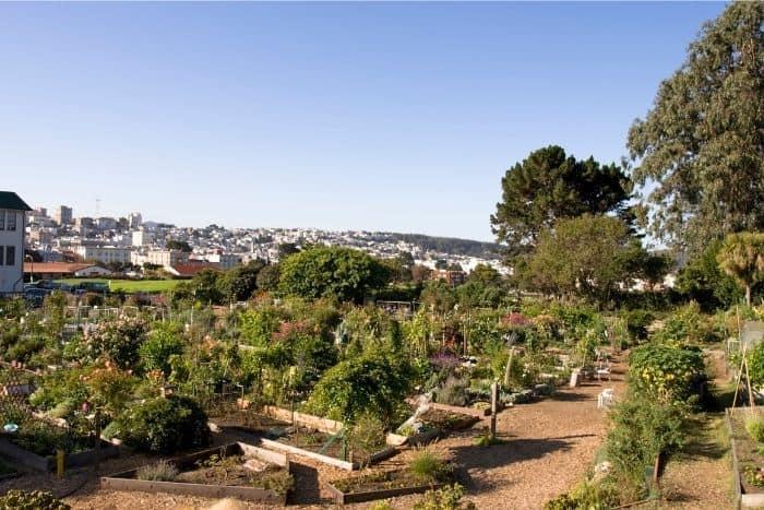 10. Fort Mason San Francisco garden
