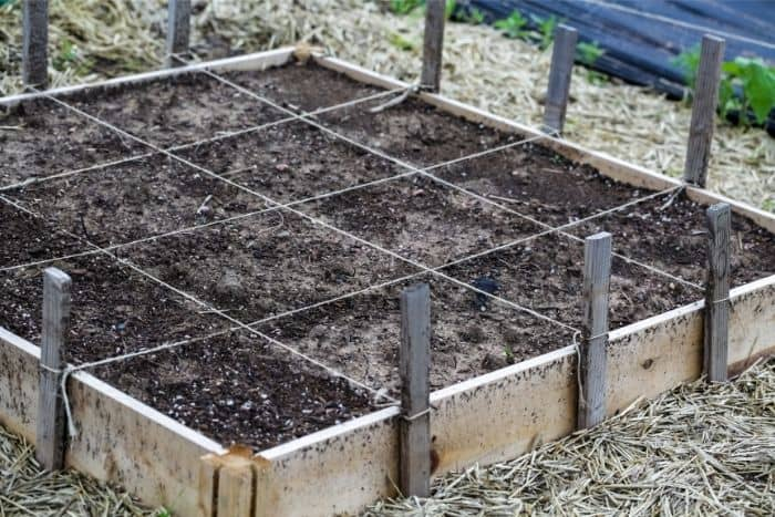 8. any site must have good soil