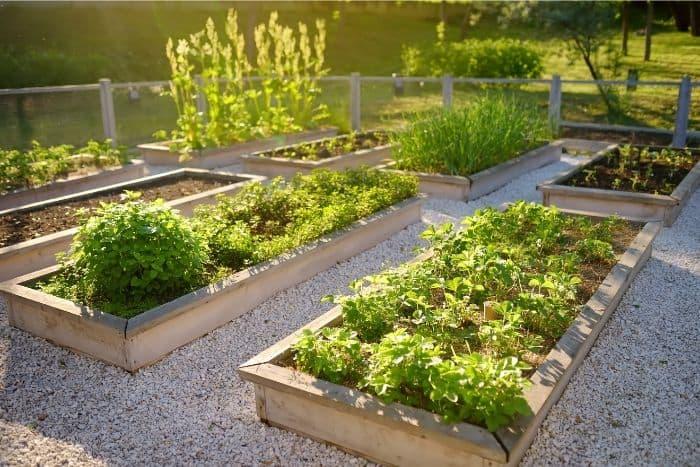 9. thorough planning equals successful planting