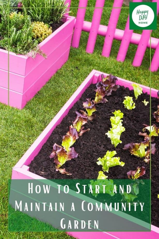 How to Start a Community Garden pink